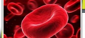 شاخص های (اندکس های) خونی مورد سنجش در آزمایش CBC