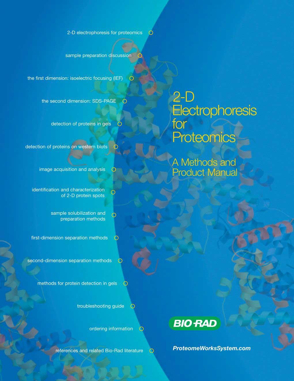 2-D-Electrophoresis-for-Proteomics---Pasteur-Lab._1