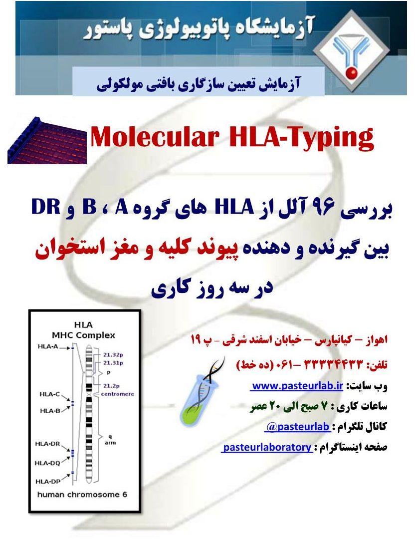 HLA Ad-6.4.95_1