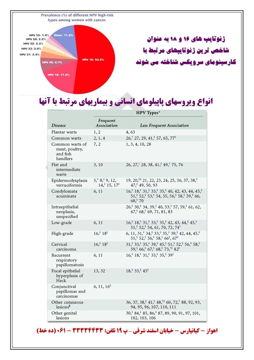 PL-HPV-AD-Assareh_3