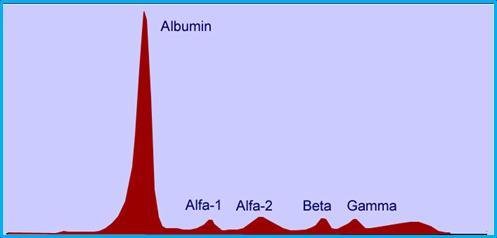 آلفا 1- گلبولین