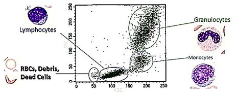نمودار نقطه ای (Dot Plot):