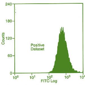 نمودار هیستوگرام (histogram):