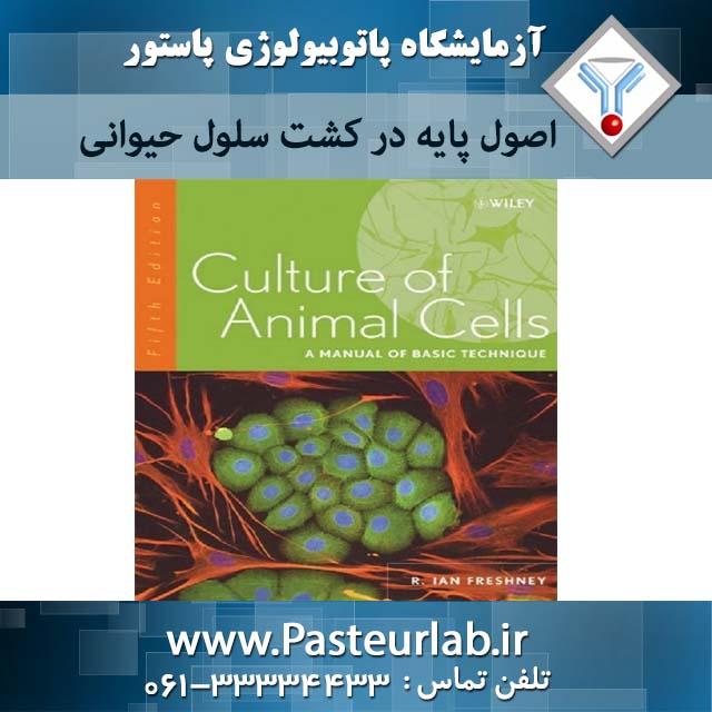 اصول پایه در کشت سلول حیوانی